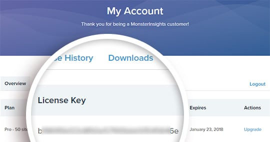 your monsterinsights license key