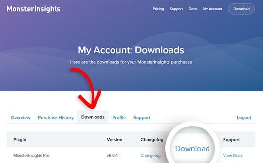 download monsterinsights plugin