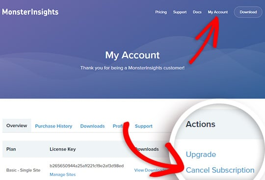 click the cancel subscription link in your account page