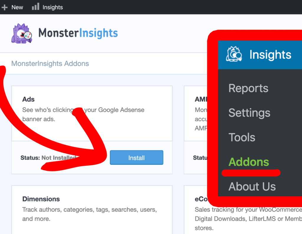 monsterinsights ads addon