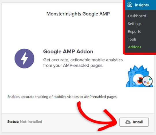 Installing the MonsterInsights Google AMP addon