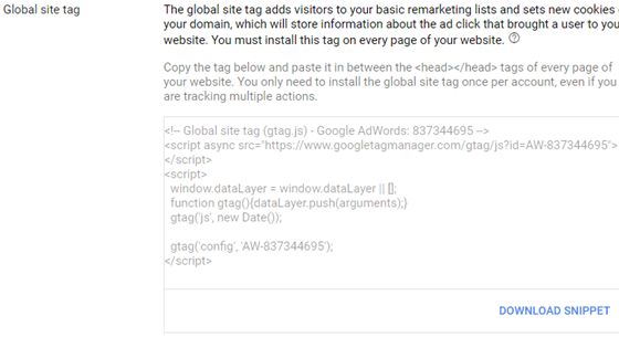 copy adwords global site tag to website