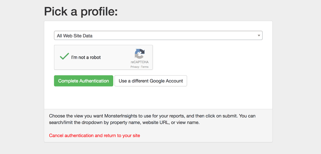 Select the Website Profile you want to Authenticate with MonsterInsights