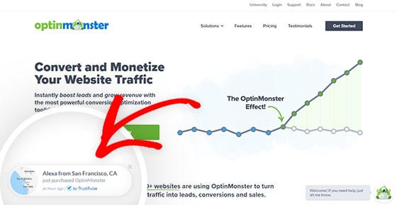 OptinMonster uses social proof notifications by TrustPulse to boost ecommerce conversions