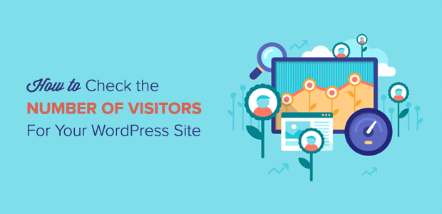 How to Check the Number of Visitors for Your WordPress Site