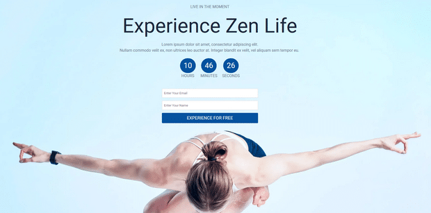 view your live landing page