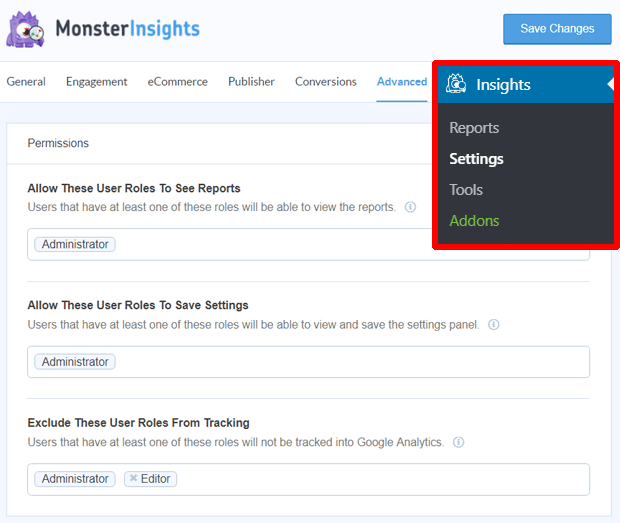 MonsterInsights Permission Settings
