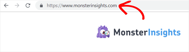 MonsterInsights Domain Name