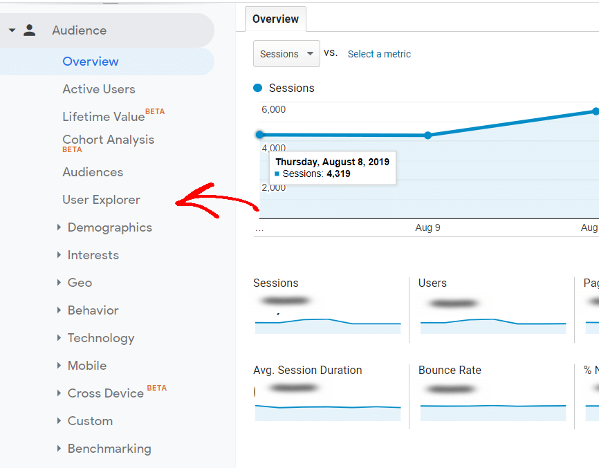 Google-analytics-audience-report-overview