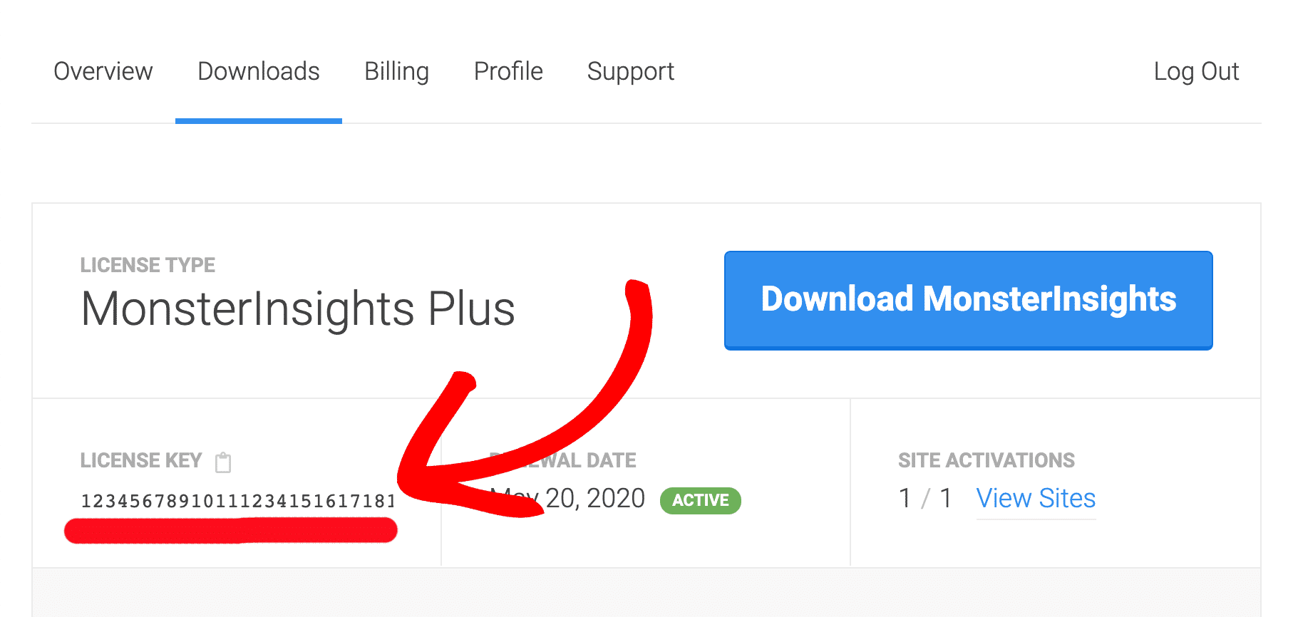How to Install the MonsterInsights Plugin
