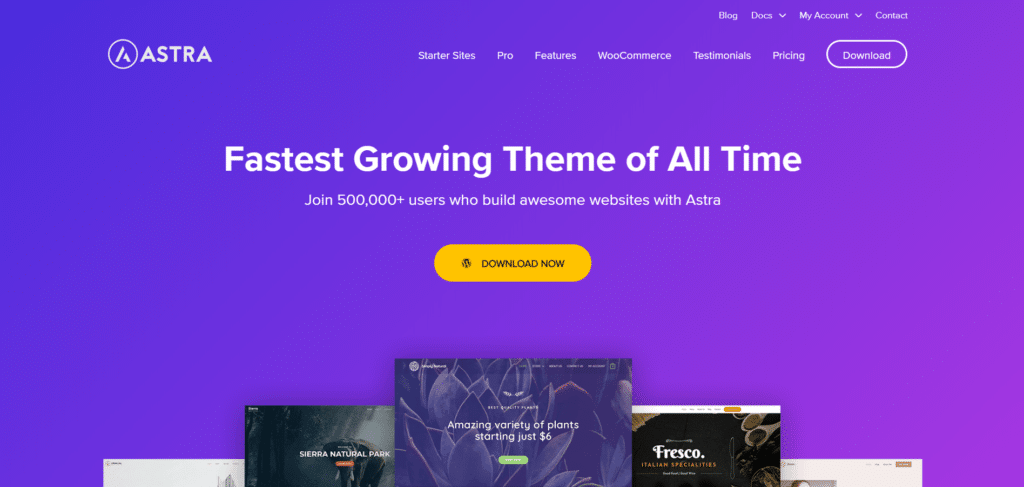 astra-theme-popular-wordpress-theme