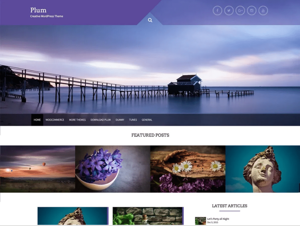 Plum-wordpress-theme