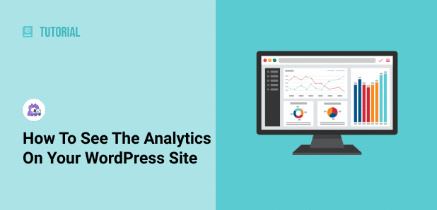 how to see analytics on your wordpress site