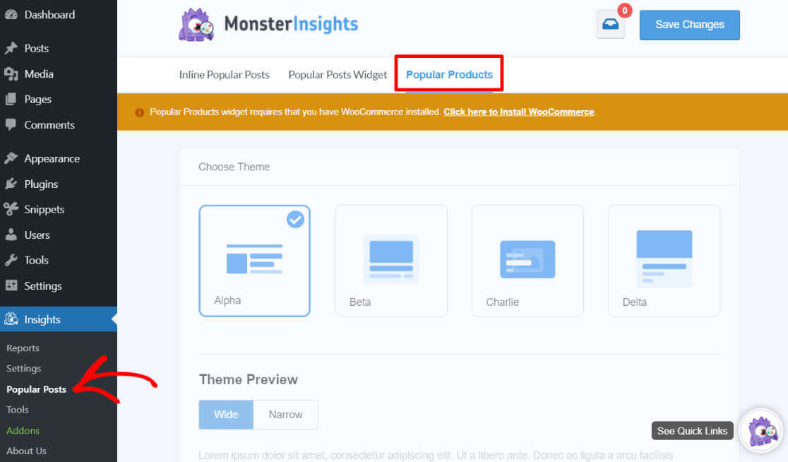 MonsterInsights Popular Products