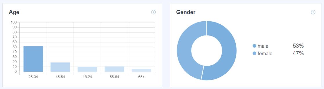 Demographics Reports in MonsterInsights